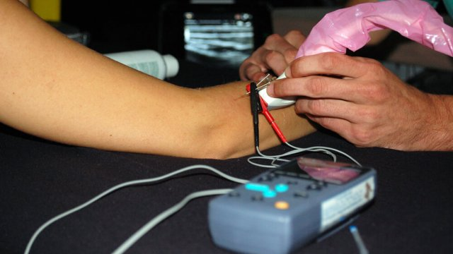 ecografia para fisioterapeutas