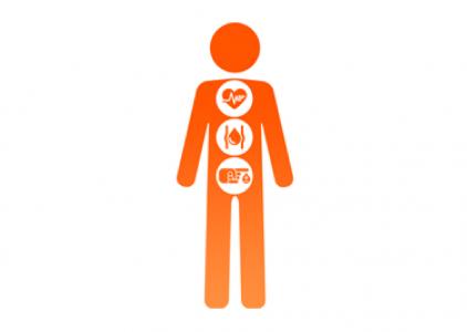 Nova forma de prevenção da diabetes tipo 2 e obesidade?