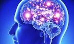 Neurociência da dor para Fisioterapeutas