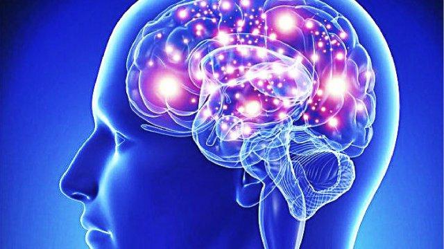 Neurociência da Dor para Fisioterapeutas 3
