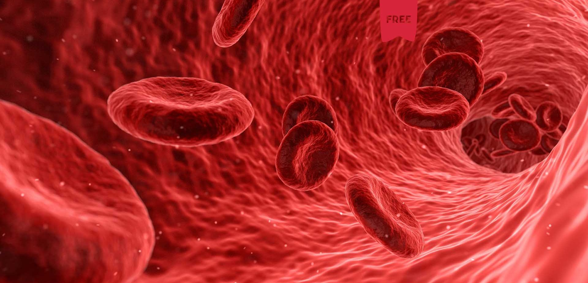Blood Flow Restriction | Por João Noura (Bwizer Magazine)
