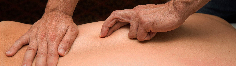 As mãos do fisioterapeuta sentem, pensam, sabem, veem.