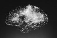 Neurodesenvolvimento: fases do desenvolvimento psicomotor e sinais de alarme