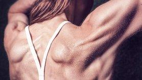 IFBB (International Federation of Body Building & Fitness): a formação que procuras