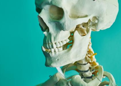 Disfunções crânio-cervicais: testes de estabilidade global da cervical