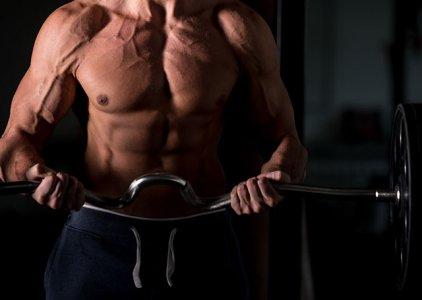Desequilíbrios Musculares, por prof. Maurício de Arruda Campos