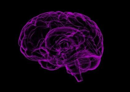 Escala Ramsay ou RASS: por qual optar para avaliar a consciência?