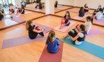 Cursos Pilates CPD Online: Aulas de Grupo   Certificação APPI