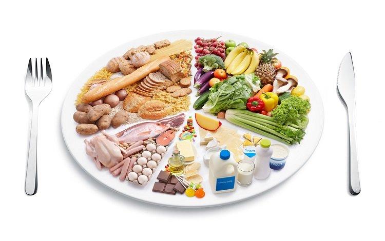 Roda dos Alimentos no prato