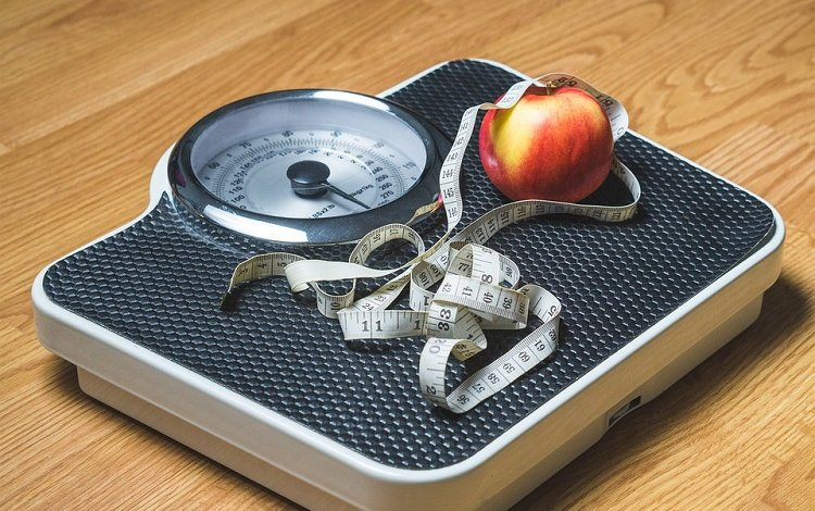 Proteína: Estratégias em Nutrição no Exercício