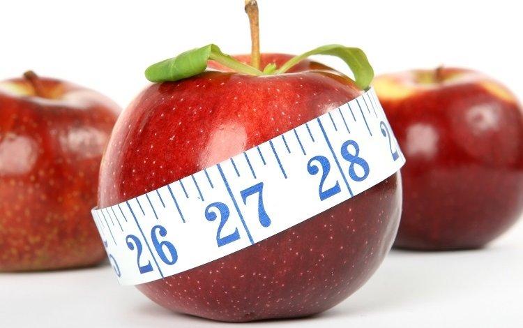 Mais estudos científicos é sinónimo de melhores práticas na nutrição?