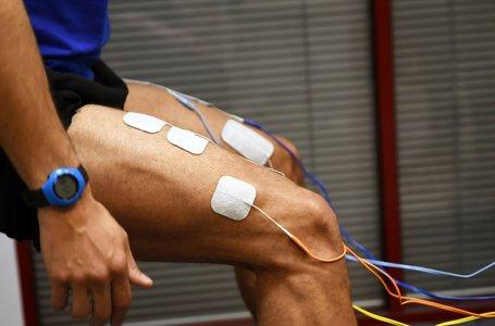 Workshop: Eletroestimulação Muscular no Desporto