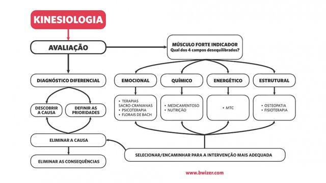 Kinesiologia o curso