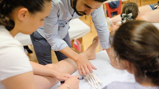 Anatomia palpatória turma