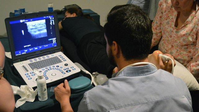 curso ecografia musculo-esqueletica