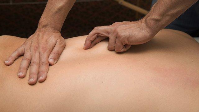 fáscia para fisioterapeutas
