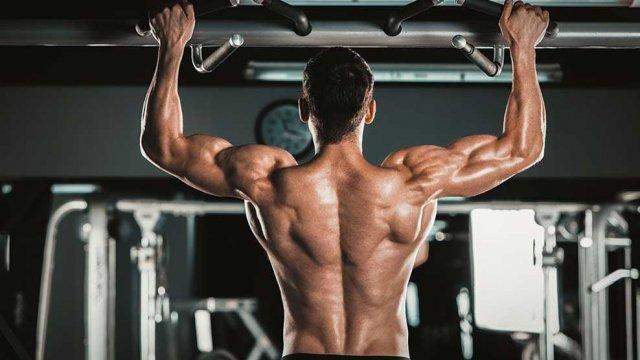 Curso Online: Master Bodybuilding & Fitness Degree